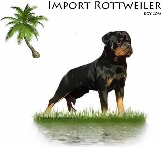 ImportRottweilerLogo1.jpg