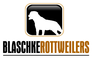 logo_005-296x191.png