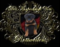 dkv-rottweilers-rottweiler-puppies-for-sale-dkv-rottweilers-logo.jpg